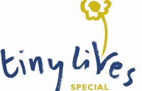 tiny-lives